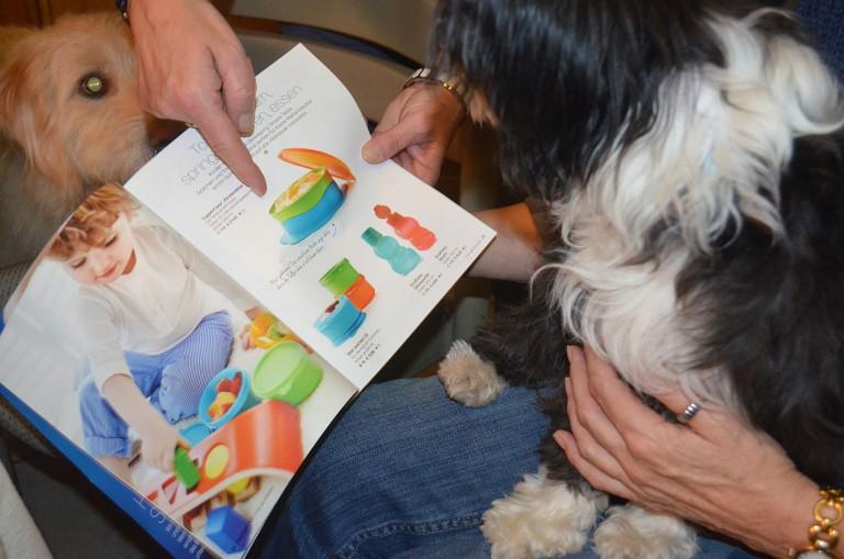 Benefizparty im Hundezeit-Kontor am 22. Juni